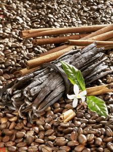 Coffee Beans, Vanilla Pods and Cinnamon Sticks by Karl Newedel
