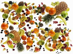 Many Different Types of Fruit Against White Background by Karl Newedel