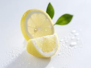 Slice and Wedge of Lemon by Karl Newedel