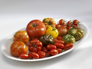 Various Types of Tomatoes on a Platter by Karl Newedel