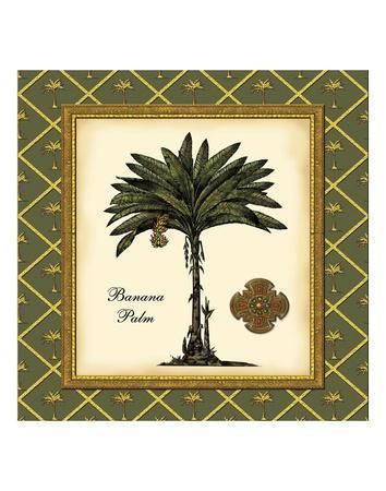 Banana Palm (Green)