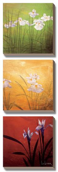 Karma-Don Li-Leger-Canvas Art Set