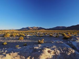Landscape near the Villa Mar village at sunset, Nor Lipez Province, Potosi Department, Bolivia, Sou by Karol Kozlowski