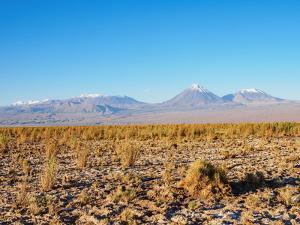 Salar de Atacama, Atacama Desert, Antofagasta Region, Chile, South America by Karol Kozlowski