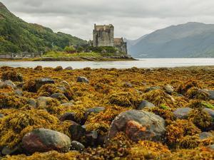 View of the Eilean Donan Castle, Dornie, Highlands, Scotland, United Kingdom, Europe by Karol Kozlowski