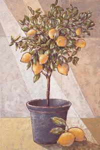 Lemontree by Karsten Kirchner