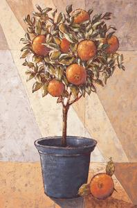 Orangetree by Karsten Kirchner
