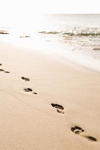 Beach Walk by Karyn Millet