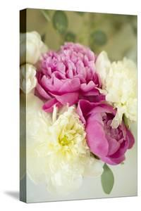 Bouquet of Peonies by Karyn Millet