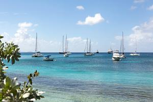 Caribbean Boats II by Karyn Millet