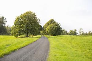 Country Road II by Karyn Millet