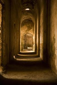 Down the Hall II by Karyn Millet
