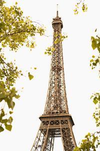 Eiffel Tower II by Karyn Millet
