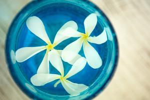 Floating Flowers I by Karyn Millet
