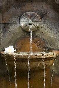 Fountain I by Karyn Millet