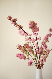 Fresh Cut Flowers II by Karyn Millet