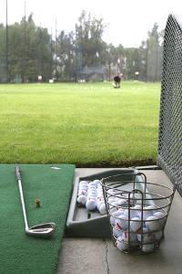 Golf II by Karyn Millet