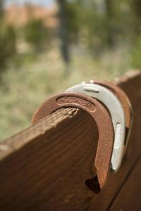 Horse Shoes by Karyn Millet