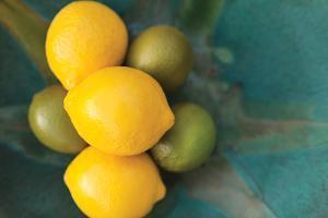 Lemons by Karyn Millet