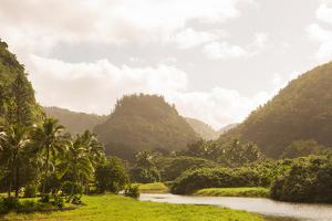 North Shore Hawaii by Karyn Millet