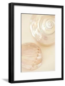 Ocean Treasures II by Karyn Millet