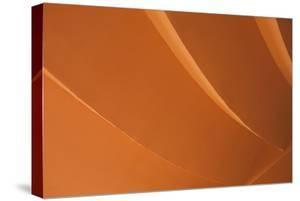 Orange by Karyn Millet