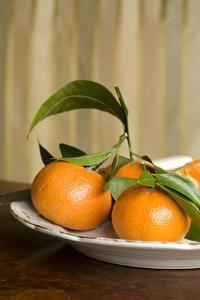 Oranges I by Karyn Millet