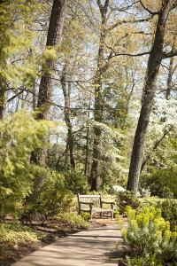 Park Bench by Karyn Millet