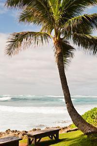 Peaceful Caribbean I by Karyn Millet