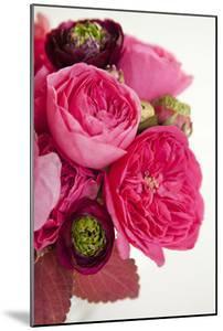 Peony Bouquet II by Karyn Millet