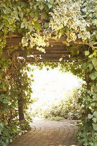 Secret Garden II by Karyn Millet