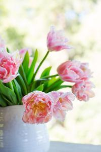 Tulip Bouquet II by Karyn Millet