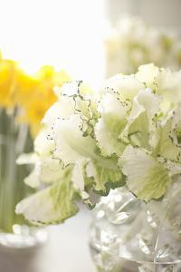 White Bouquet by Karyn Millet