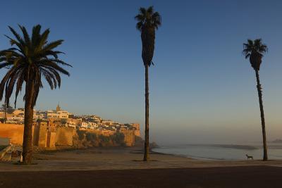 Kasbah Des Oudaias, Rabat-Design Pics Inc-Photographic Print