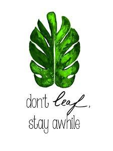 Don't Leaf, Stay Awhile by Kat Papa