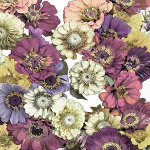 Floral Abundance II by Kate Bennett