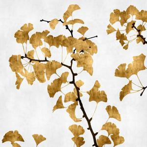 Ginko in Gold I by Kate Bennett