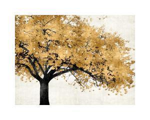 Golden Blossoms by Kate Bennett