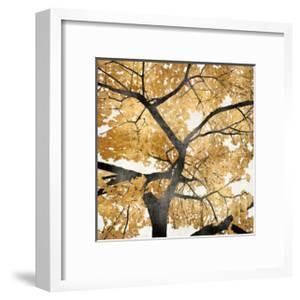 Golden Leaves by Kate Bennett