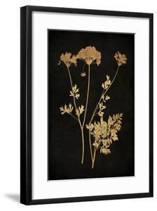 Golden Nature III by Kate Bennett