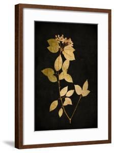 Golden Nature VI by Kate Bennett