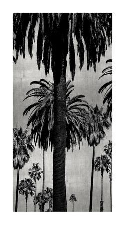 Palms with Silver I