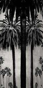 Palms with Silver II by Kate Bennett