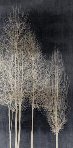 Silver Tree Silhoutte I by Kate Bennett