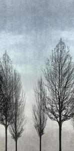Tree Silhouette II by Kate Bennett
