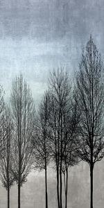 Tree Silhouette III by Kate Bennett