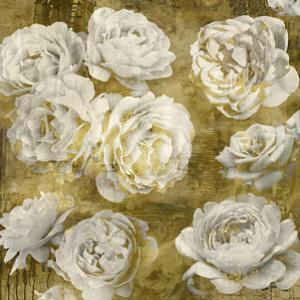 White in Gold by Kate Bennett