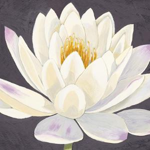 Moon Lily I by Kate Mawdsley