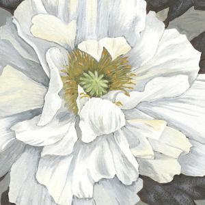 Pure Poppy I by Kate Mawdsley