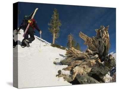 Man Spring Skiing-Ski Mountaineering